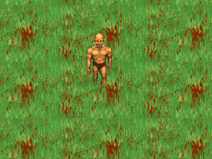 grass texture game. [Adonthell-artwork] Grass Texture V.0.1 Game